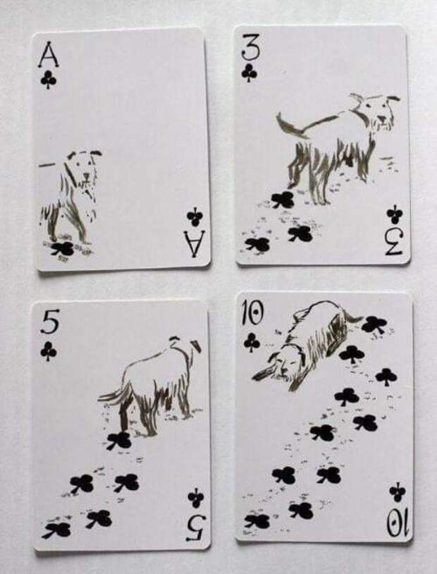 Карты про собак