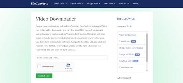 Fileconverto video downloader