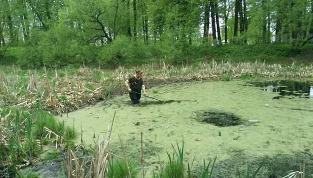 В Подольске очистили от мусора пруд в селе Сынково