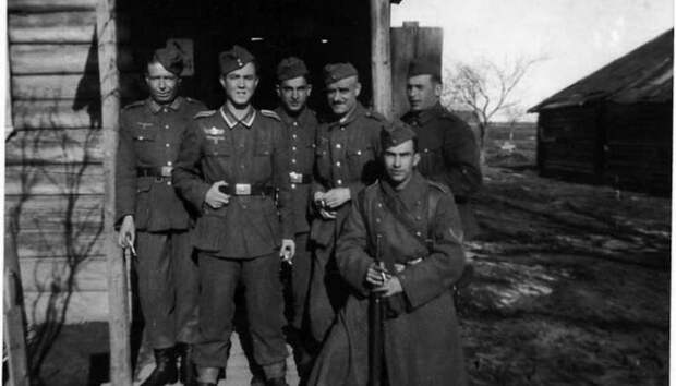 Кто входил в «Голубую дивизию», и почему она выступала против Советского Союза