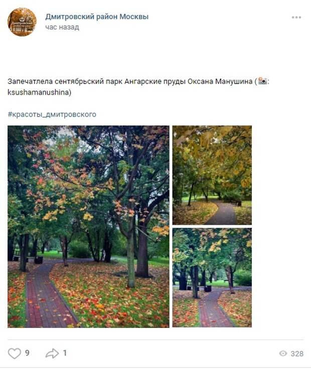 Фото дня: сентябрь в парке «Ангарские пруды»
