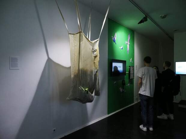 На выставке в Щукине можно узнать, о чём «говорят» птицы