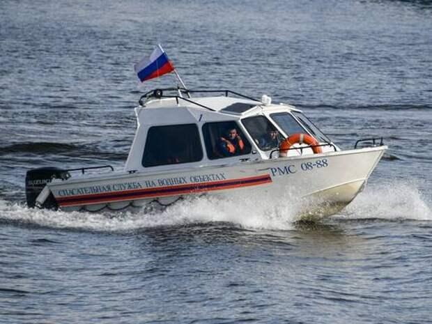 Спасатели вытащили из водоемов Москвы двух тонувших человек