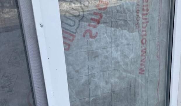 Окна ижевского котокафе с живыми кошками внутри заклеили непрозрачной пленкой
