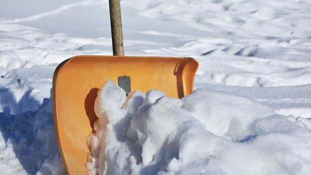 Двор на Ташкентской очистили от снега — Жилищник