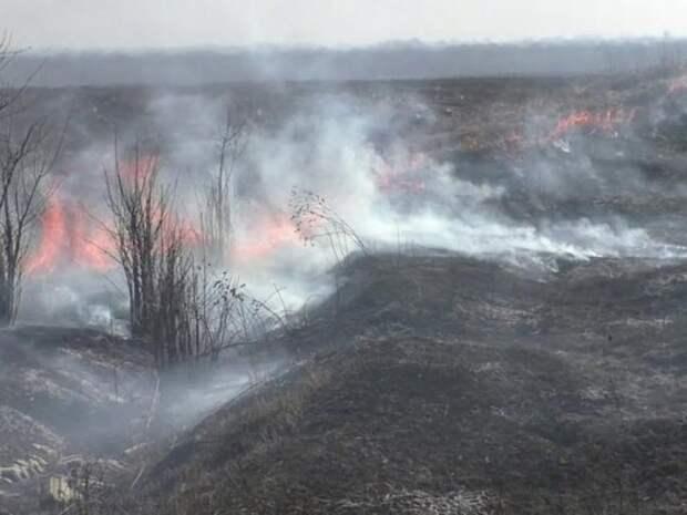 Забайкалец нечаянно устроил пожар на кладбище в Сретенске