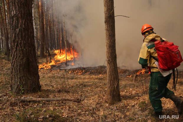 Напожарах влесах Тюмени пострадали люди