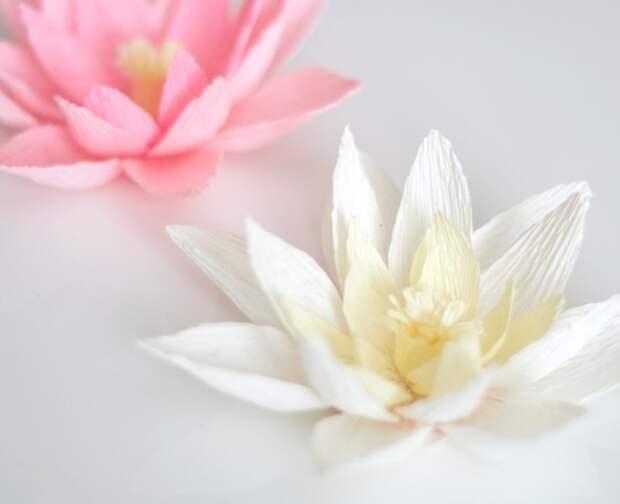 Как сделать бумажные цветы — 5 мастер-классов