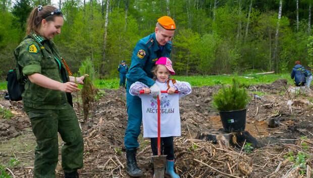 Более 500 человек приняли участие в акции «Лес Победы» в Львовском лесничестве
