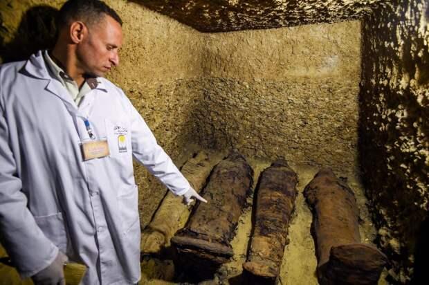 Братская могила по-египетски: 50 мумий возрастом более 2400 лет найдены возле Каира