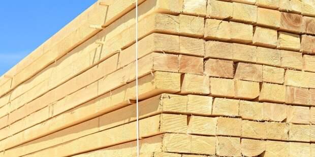 Предпринимательницу подозревают в контрабанде древесины