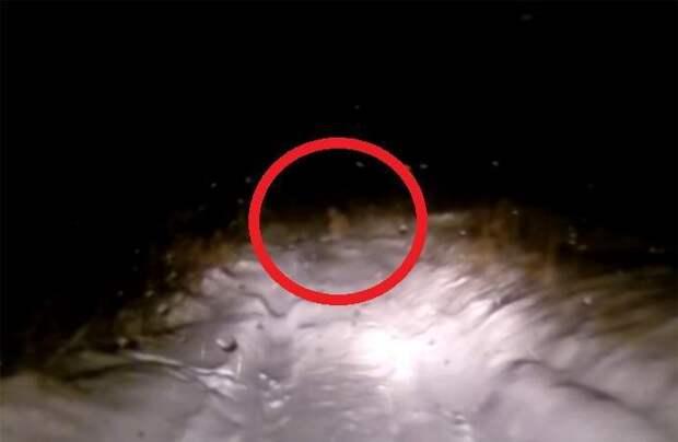 Видеорегистратор запечатлел снежного человека в Башкирии