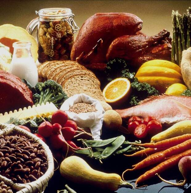 Важный холин: Лучшие источники витамина В4