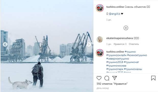 Фото дня: зимний постапокалипсис