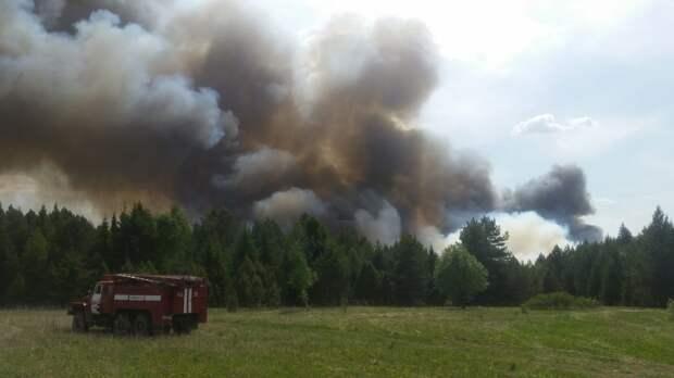 В МЧС Удмуртии успокоили жителей населенных пунктов вблизи горящего леса у деревни Поваренки