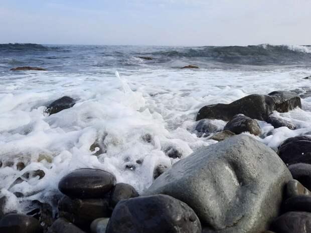 Харьковский нардеп из партии Зеленского строит в Крыму дом у моря