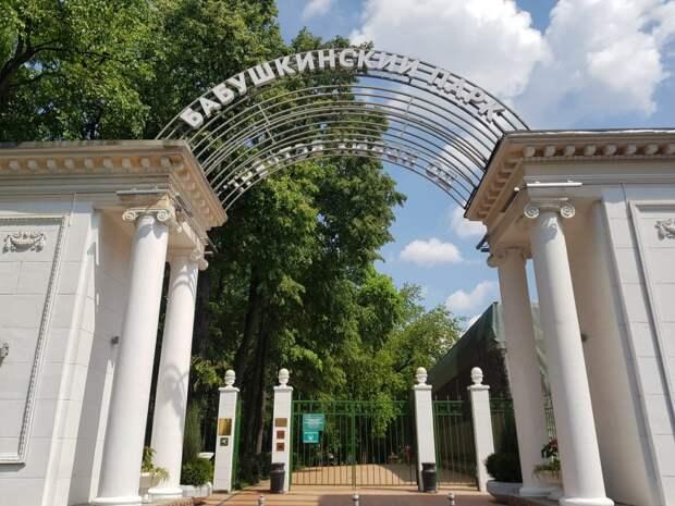 Площадка для воркаута работает в Бабушкинском парке