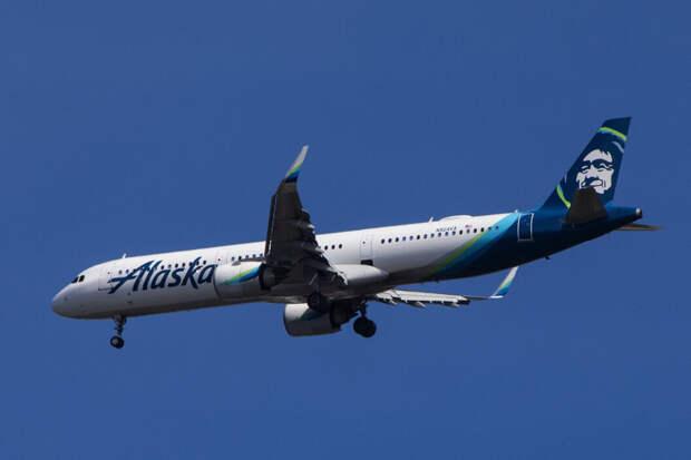 На Аляске самолёт сбил медведя при посадке