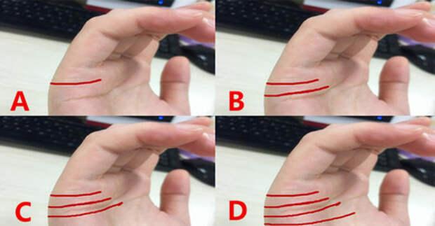 Количество линий на правой руке показывает, какой будет ваша судьба в браке