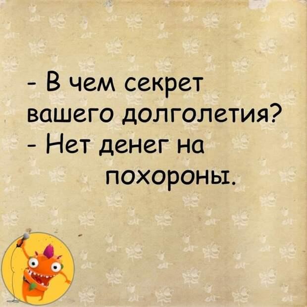 3416556_185927793_1901044190061947_8019909645431699123_n (700x700, 312Kb)