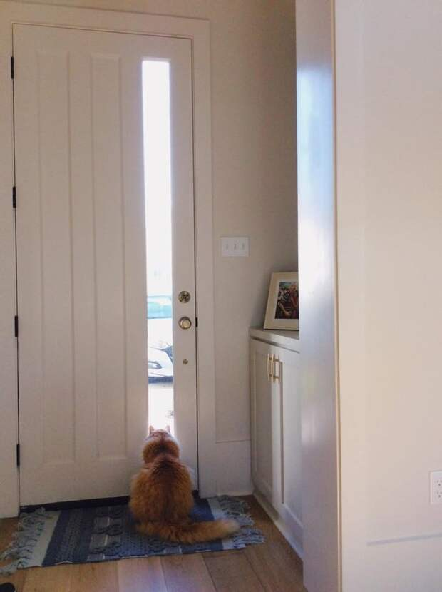 13 вещей в доме, на которые обращают внимание люди, когда приходят в гости