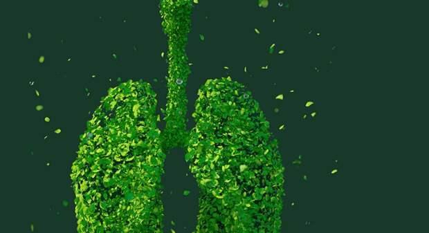 В чём заключается главная опасность пневмонии