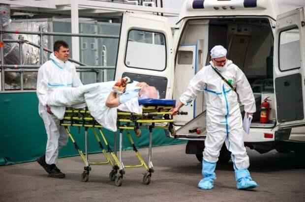 Число выявленных случаев заражения коронавирусом за сутки выросло на 8 115