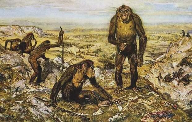 Примерно 4 млн лет назад мозг гоминидов начал стремительно расти, постепенно превращая их в разумных существ / Фото: sevgym14.ru
