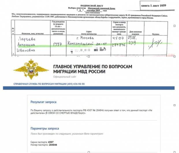 Из материалов расследования члена Общественной палаты РФ Ильи Ремесло