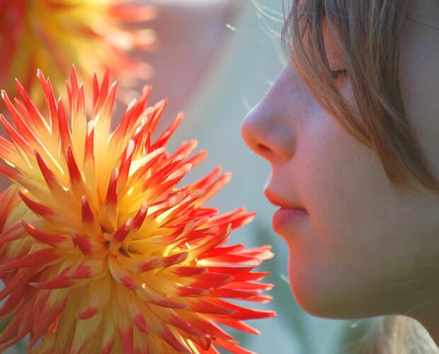 Человек способен различать триллион запахов