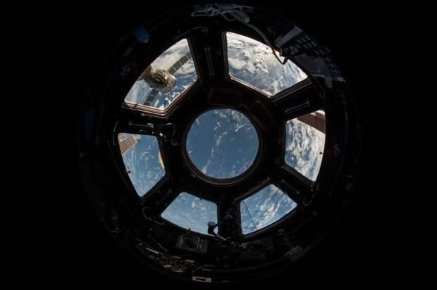 Космонавты выявили превышение уровня плесени на МКС