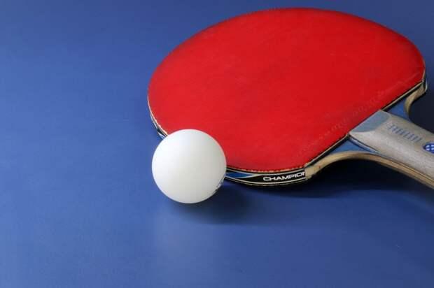 Поиграть в пинг-понг в Ростокине можно по четырем адресам — управа