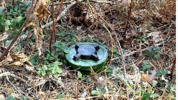 Слабоумие и алкоголь: пьяный каратель ВСУ подорвался на «дружеской» мине