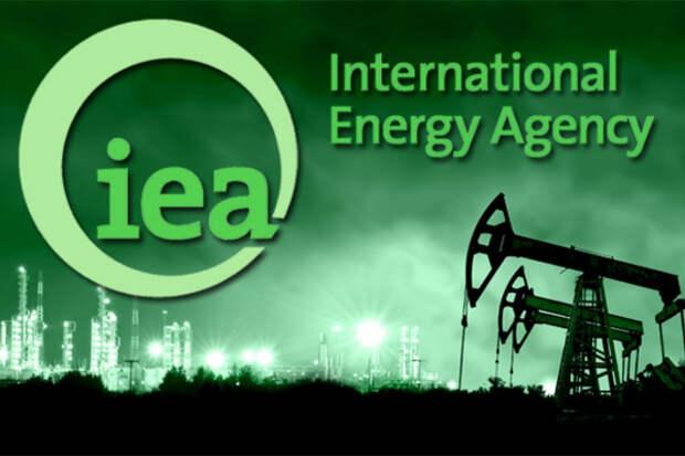 Доклад МЭА вызвал разногласия в крупном российском бизнесе