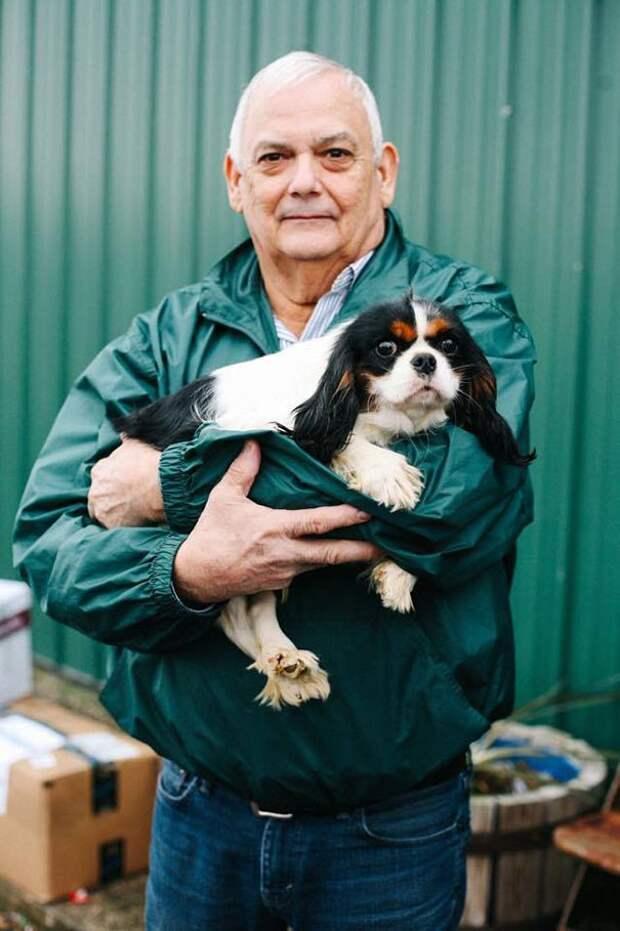 108 спасенных собак питомник, спсение, щенки