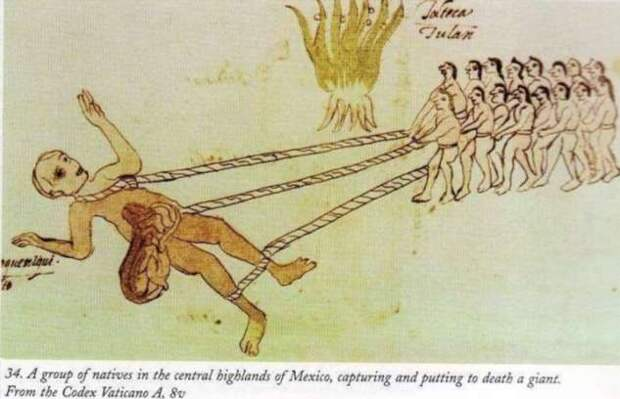 Откуда ольмеки? Первая из известных цивилизация Америки — Истории Земли (6 фото)