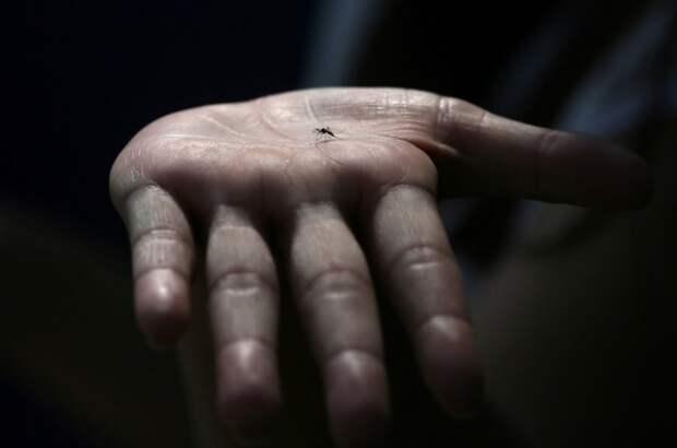 Ученые развеяли один из мифов о заражении коронавирусом