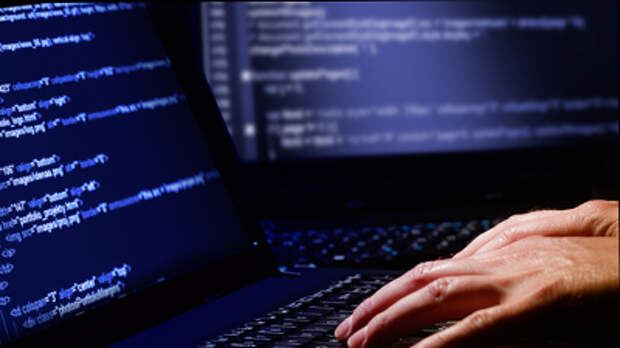 Задержанный в США россиянин-хакер может быть сыном депутата Госдумы