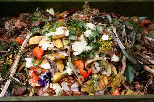 Сода избавит компостницу от неприятного запаха