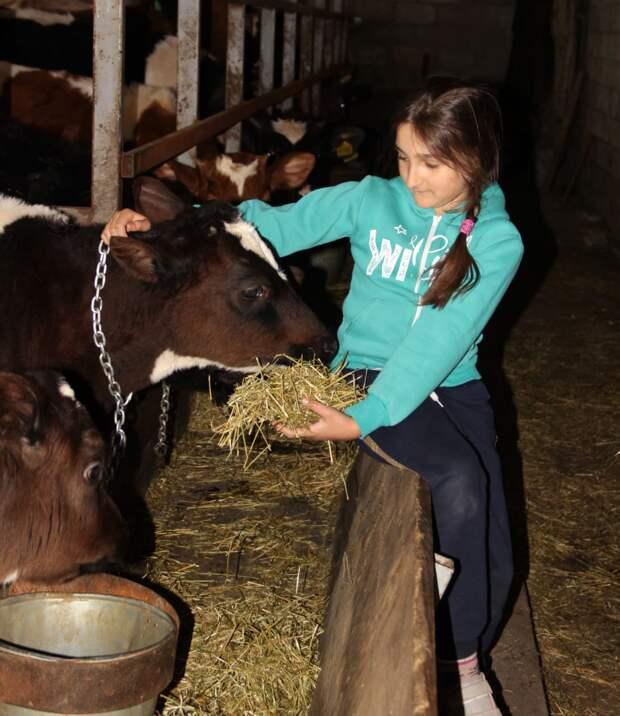 «Говорят, что для ведения фермы у нас слишком много детей, а мы говорим – справимся!»