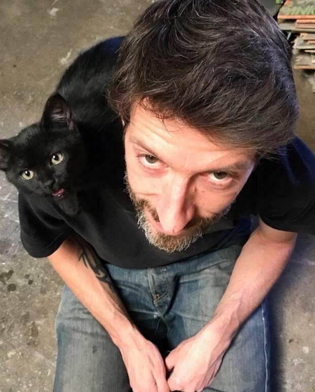 Мужчина вышел на перерыв с работы, а вернулся с котенком на плече до и после, история, история спасения, коты, котята, кошки, мило