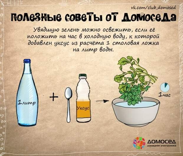 Как освежить зелень