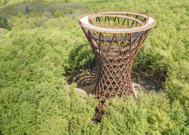 Оригинальный прогулочный маршрут в датском лесу. /Фото: pro-remont.ru