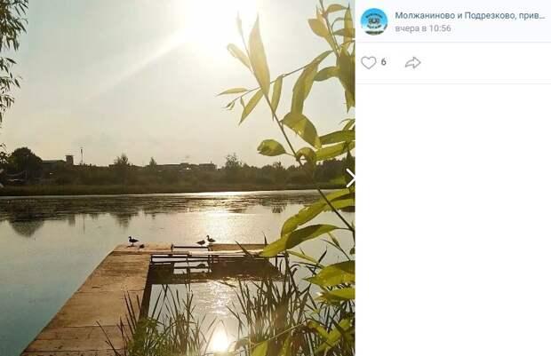 Фото дня: пользователи соцсетей назвали Молжаниновский самым умиротворенным районом