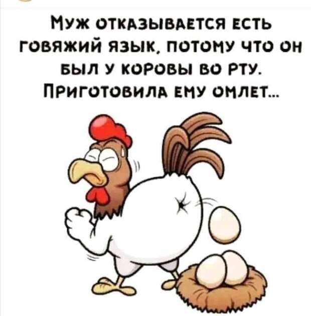 Возможно, это изображение (текст «муж отказывается есть говяжий язык, потому что он быð y коровы BO рту. приготовила ему омлет...»)