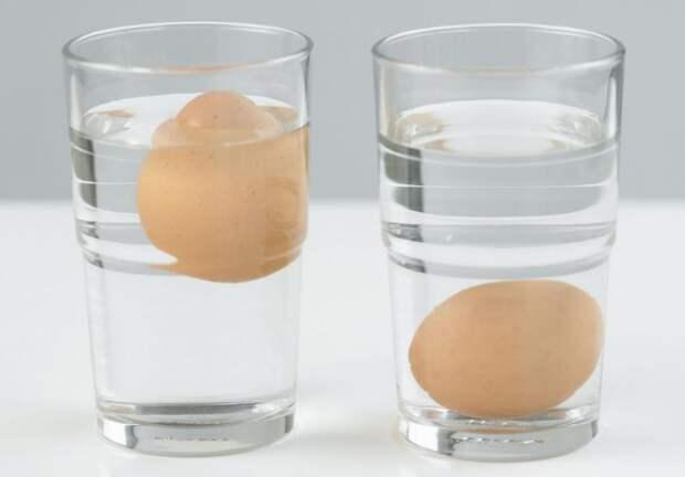 Всплывшее яйцо - плохой признак, а вот утонувшее на дно - свежий продукт / Фото: syl.ru