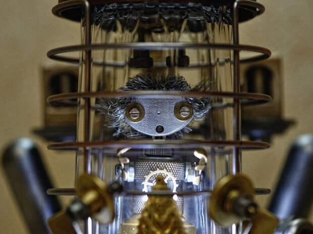 Волгодонец Влад Веклич создал «робота», который спрятался от мира на самоизоляцию