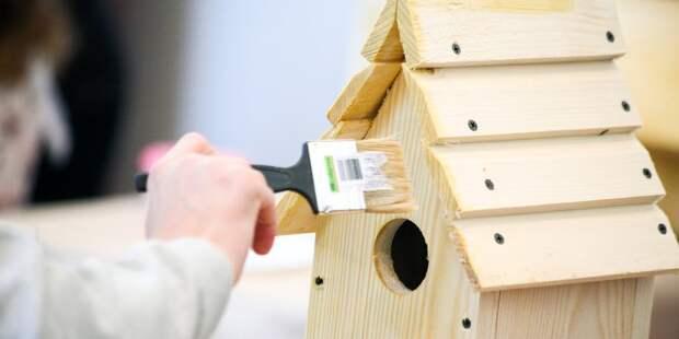 Посетители «Рассвета» помогут орнитологам создать новые дома для птиц