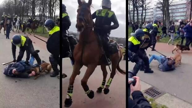 Это Голландия. Смотреть оппозиционерам ругающим жестокость Путина