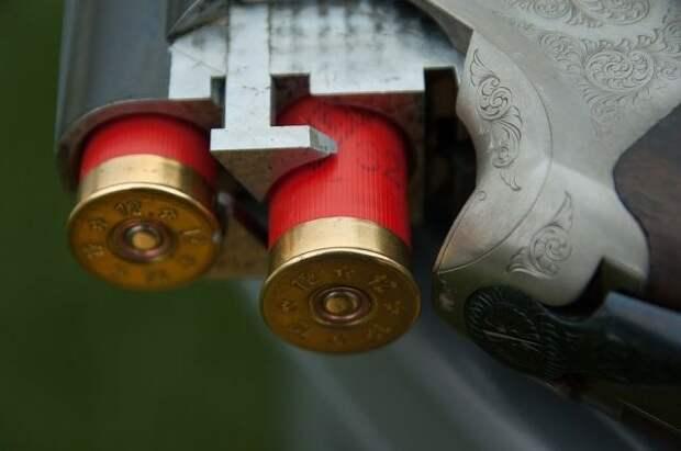 В ГД оценили возможность изменения возрастного ценза на ношение оружия